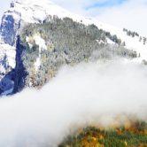 Dans les Alpes françaises, Flaine voit la vie en vert - A/R Magazine voyageur 2019